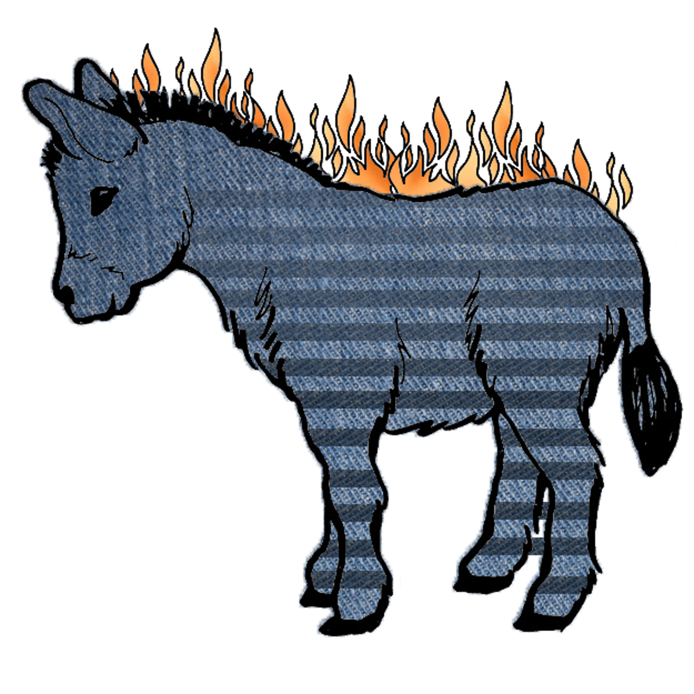 Flaming Zonkey Podcast